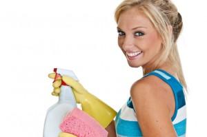 Ihre Gute Fee putzt Ihnen die Wohnung und die Fenster